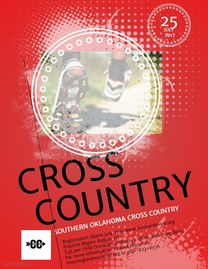 Cross Country Flyer (2)
