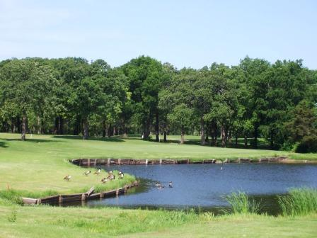 Geese swim in a pond located within the golf course